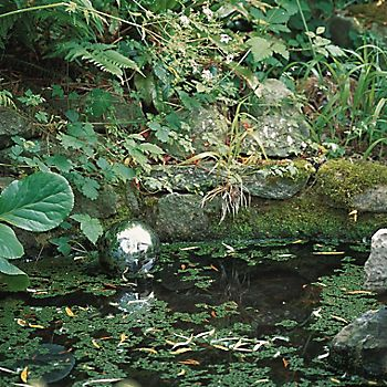 pond with plastic floating ball