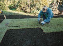 lay turf strips
