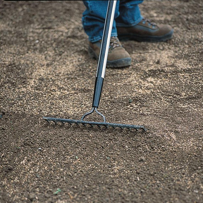 Landscape Rake For Seeding : How to lay a lawn from seed help ideas diy at b q
