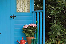 A splash of paint for your garden