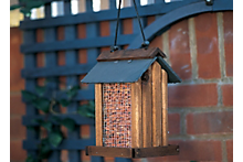 How to create a wildlife friendly area in your garden