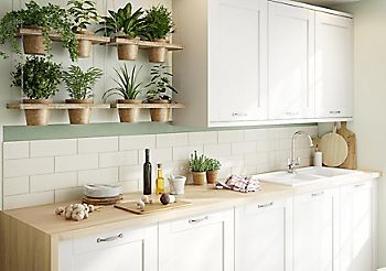 Houseplants in kitchen