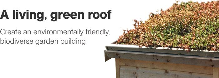 Did you know that B&Q now sells living green roof kits?