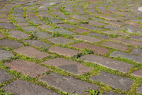 how to stop weeds growing between paving slabs