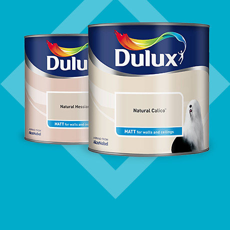 Dulux 2.5L SCE<br>2 for £24