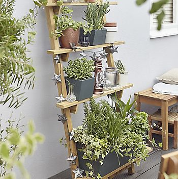 Wooden ladder planter with herb and small plants