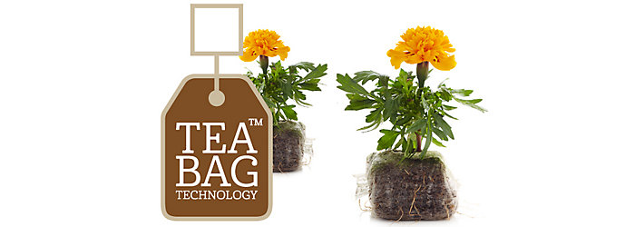 easygrow teabag technology