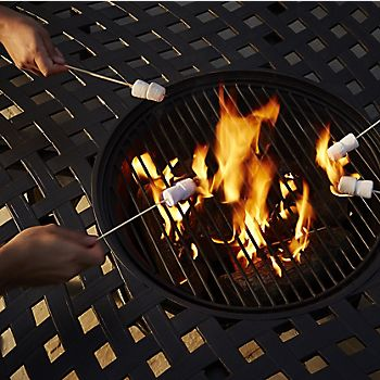 toasting marshmallows over a fire pit
