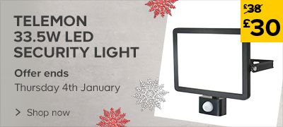 Telemon Security Light Now £30