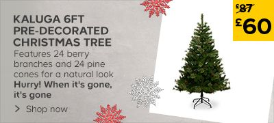 Xmas Trees Price Cuts