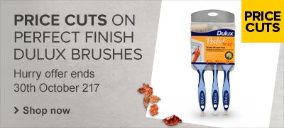 Price cuts across Dulux paint brushes