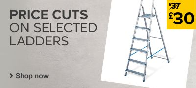 Price cuts on selected ladders