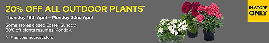 20% off outdoor plants