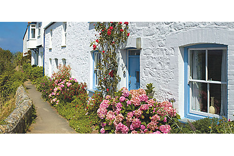 Cottage with climbing flowers