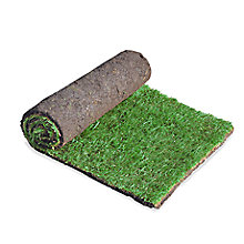 Rolled lawn turf