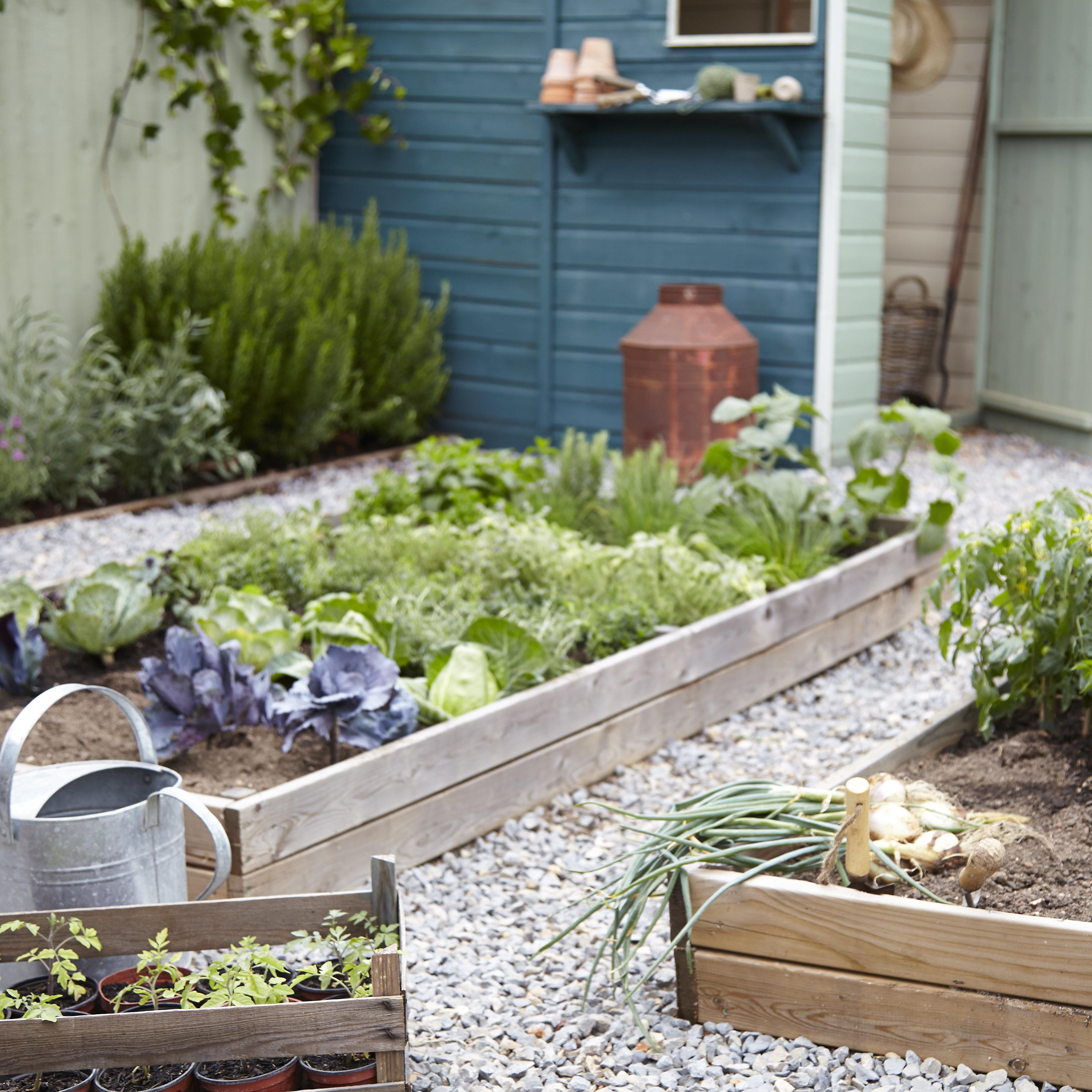 How To Design A Safe And Fun Family Garden