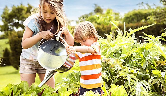 children watering garden plants with watering can