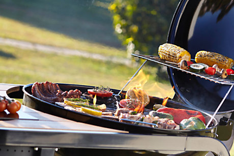 Barbecue accessories: Double pronged skewers & beer can chicken holder