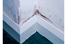How to identify, repair and protect against damp at home