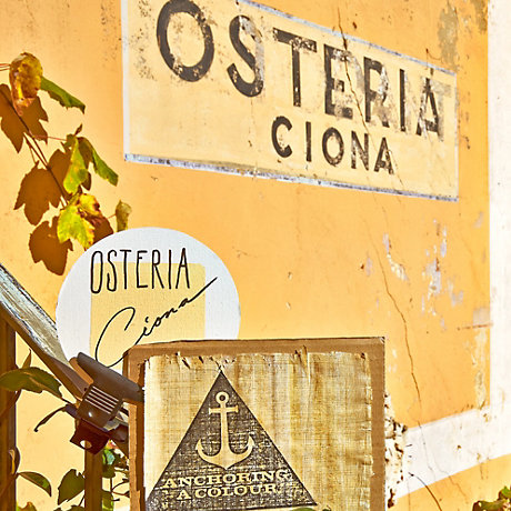 Image of Osteria Ciona colour