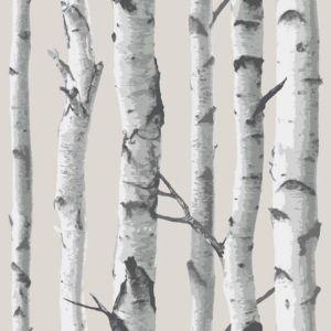 Image of Wallpops Birch tree Grey Peel & stick wallpaper (L)5500mm (W)520mm