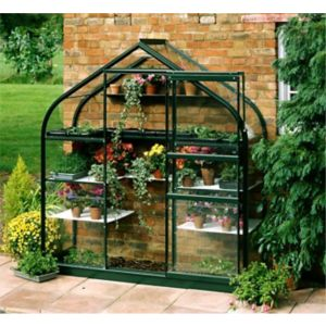View B&Q 6X2 TSG Wall Garden Greenhouse details