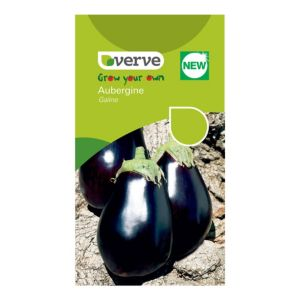 Verve Aubergine Seeds  F1 Galine Mix