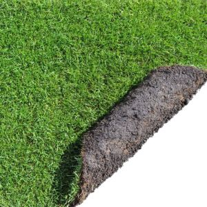 View Lawn Installation & Maintenance details