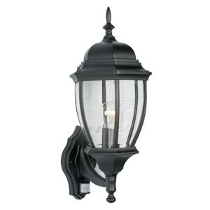 View Lights Outside Lanark Black External PIR Lantern details