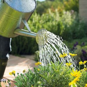View Watering Cans & Sprayers details