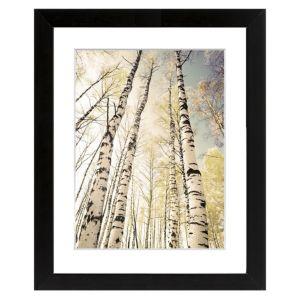 Image of Autumn trees Black Framed art (W)540mm (H)440mm