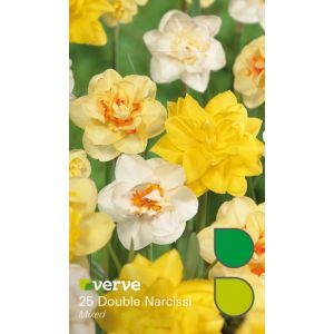Image of Double narcissi Mixed Bulbs