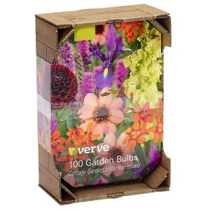 Image of Cottage garden mixed Flower bulb