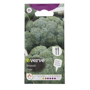 Image of Cezar broccoli Seed
