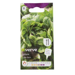 Image of Little Gem lettuce Seed
