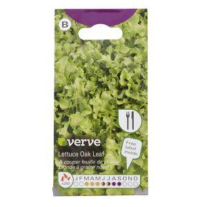 Image of Lettuce oak Seed