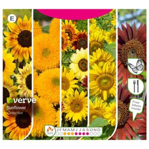 Image of Collection Sunflower Seed