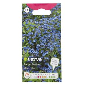 Image of Blue Lake Forget me not Seed