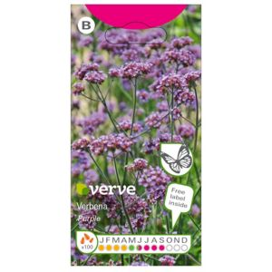 Image of Purple seed Verbena Seed