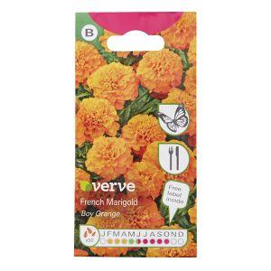Image of Boy Orange Marigold Seed