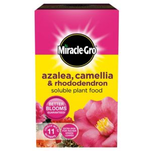 Image of MIRACLE-GRO ERICACEOUS PF 1KG