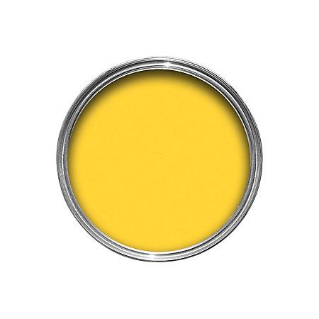 view sandtex 10 year exterior hot mustard gloss paint 750ml details. Black Bedroom Furniture Sets. Home Design Ideas