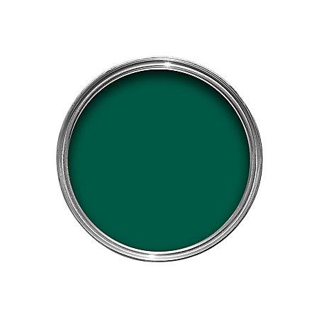 Dulux Interior Exterior Regent Green Gloss Wood Metal Paint 750ml Departments Diy At B Q