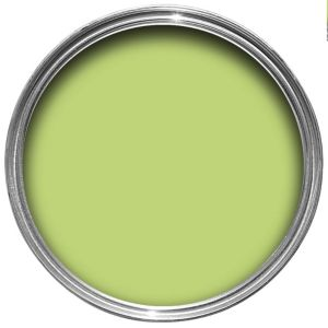 View Dulux Endurance Kiwi Crush Matt Emulsion Paint 2.5L details