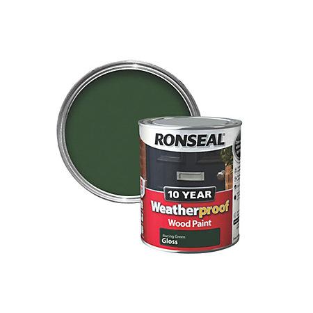 Ronseal Racing Green Gloss Wood Paint 750ml Departments Diy At B Q