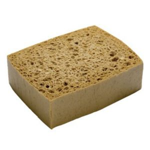 Image of Oakey Sponge