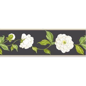 Photo of Camelia black floral border