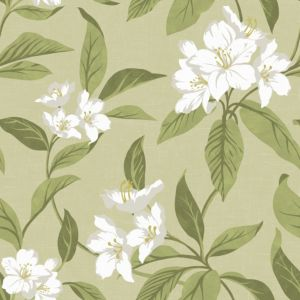 View Fine Decor Hawaii Green Wallpaper details