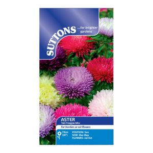 Image of Suttons Aster Seeds Tall Fraggle Mix