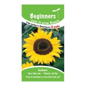 B&Q/Outdoors/Gardening/Suttons Beginners Sunflower Seeds  Giant Yellow Mix
